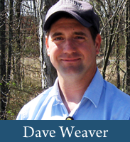 Dave Weaver